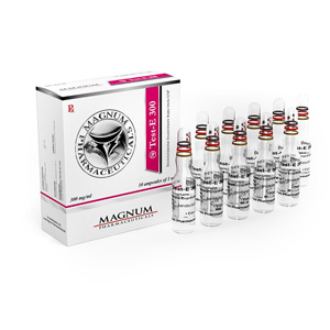 Lowest price on Testosterone enanthate. The Magnum Test-E 300 buy USA cycle